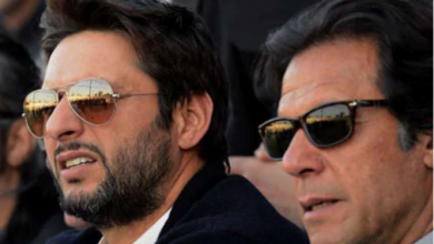 Fans voted Imran Khan-Shahid Afridi duo as 'dream pair to watch' on field