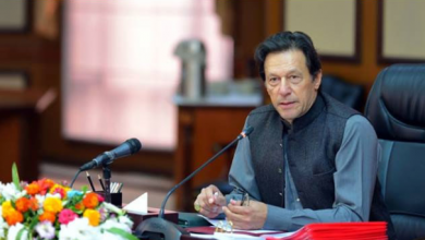 PM Imran Khan formed body mulls digital account offering for overseas Pakistanis