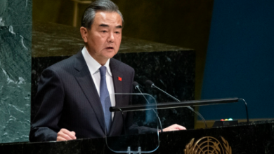 China urges United Nations to find reasonable solution to Palestine issue