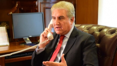 After smart lockdown Pakistan witnessing downturn in COVID-19: FM Qureshi