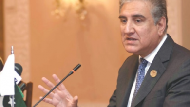 FM Qureshi: Not everyone understands depth of Pakistan's ties with Saudi Arabia