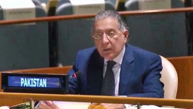 Israel has no business to be in Occupied Palestinian Territory, including E. Jerusalem: Pakistan